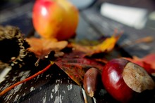 Close-up Of Chestnuts And Leav...