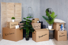 Moving Day Concept - Belonging...
