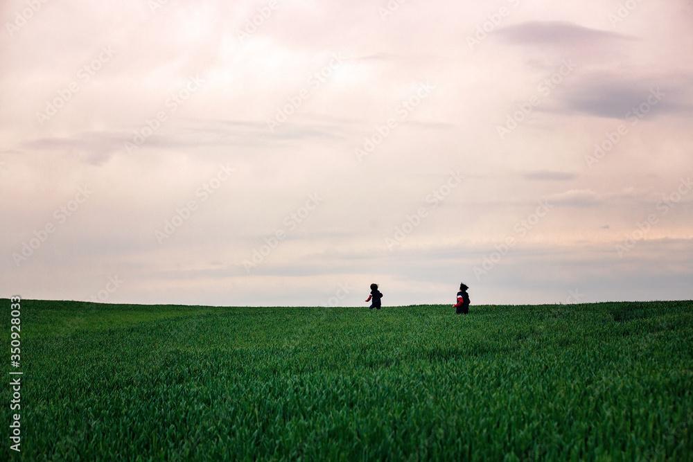 Fototapeta Preteen children, boys, running in green field on a cloudy day