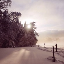 Winter Landscape Lit By Sharp Morning Sunlight