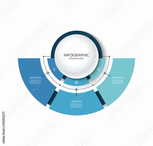 Carta da parati Infographic semi circular chart divided into 3 parts