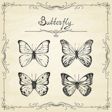 Set Of Hand Drawn Butterflies ...