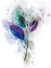 Blue Leaf On A Flower Watercolor