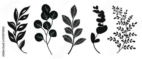 Set  of leaves silhouette of beautiful plants, leaves, plant design Wallpaper Mural