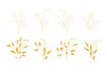 Botanical Line Art Silhouette ...