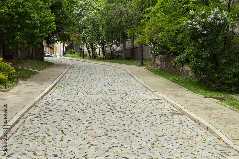 The cobbled street of the old city with green trees rises up