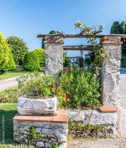 Fototapeta puit fleuri dans les jardins du monastère de Cimiez à Nice flower well in the gardens of the Cimiez monastery in Nice  obraz