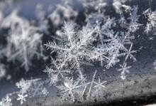 Macro Shot Of Snowflakes