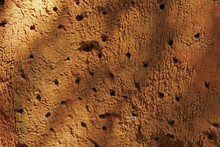 Full Frame Shot Of Clay Wall With Holes