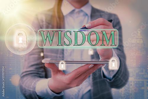 Cuadros en Lienzo Conceptual hand writing showing Wisdom