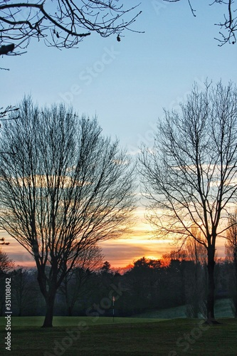 Fototapeta Trees Against Sky During Sunset obraz na płótnie