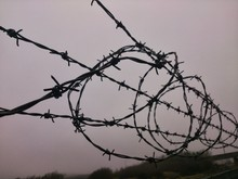 Low Angle View Of Barbed Wire ...