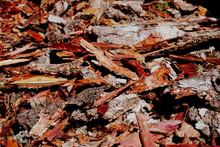 Red And Orange Stripped Cedar Bark