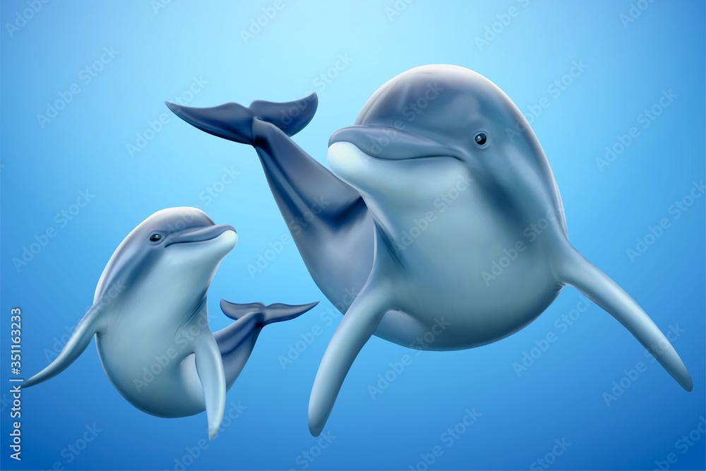Fototapeta Charming dolphin family