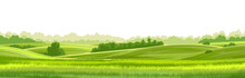 Rural Hills  Landscape Vector Background On White. Pasture Grass For Cows. Meadows And Trees. Horizon.