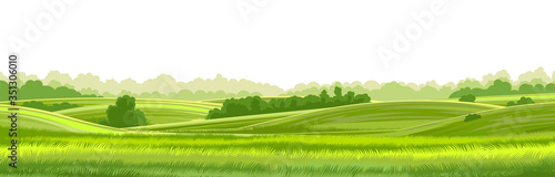 Fototapeta Rural hills  landscape vector background on white. Pasture grass for cows. Meadows and trees. Horizon. obraz