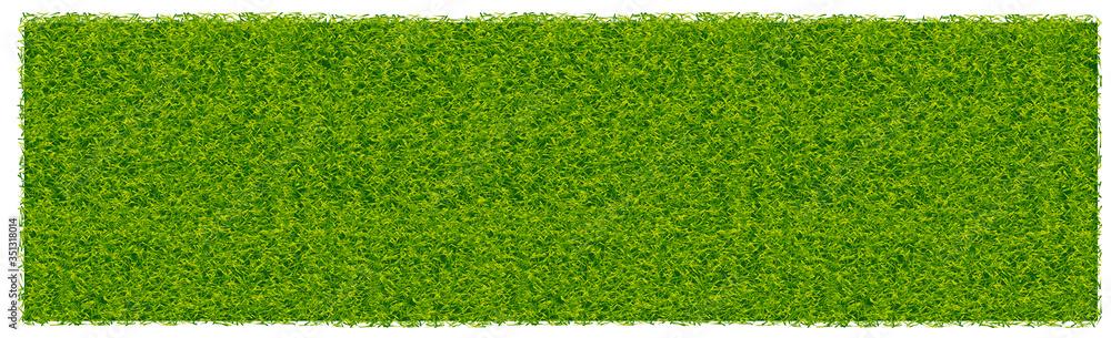 Fototapeta Green juicy grass on a white background