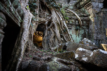 """Kambodscha, Siem Reap Province, Krong Siem Reap, Angkor, Ta Prohm-Tempelkomplex. Dieser Tempel Ist Als """"Dschungeltempel"""" Bekannt, Weil Er Nicht Von Den Riesigen Tropenbäumen Befreit Wurde, Die Ihn Im Laufe Der Zeit überwuchert Haben"""