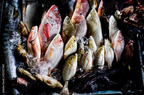 Thailand, Chang Wat Phang-nga, Tambon Takua Pa, Gekühlte Fische , authentische Reise nach Phang Nga, Leben bei den Einheimischen
