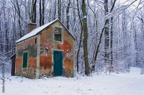 Fotografia La cabane des chasseurs