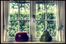 Artificial Apple And Pear By C...
