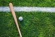 Leinwandbild Motiv High Angle View Of Baseball Bat With Ball On Grassy Field