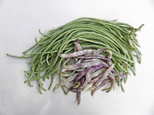 Chinese Long Beans And Dragon Tongue Bush Beans Against White Background