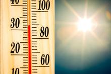 Temperature Thermometer