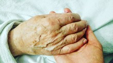 Cropped Hands Of Parent And Child Holding Hands On Bed