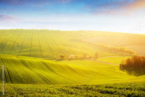 Tranquil rural landscape in sunbeams. Location place of South Moravia, Czech Republic, Europe. #351596806