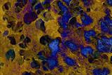 Fondo abstracto en tonos dorados y ocres incluyendo hojas en colores de otoño. - 351614874