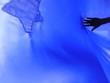 Leinwanddruck Bild - Cropped Image Of Hand Touching Blue Textile
