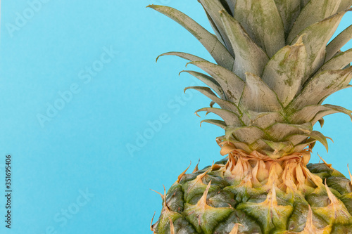Fototapety, obrazy: Closeup of Whole Pineapple on Blue Background