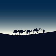 A Man's Journey With Camels Th...