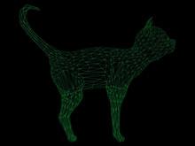 Wireframe Polygonal Cat