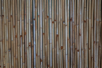 Bamboo wall or Bamboo fence texture background.