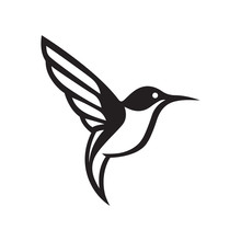 Elegant Hummingbird Vector Logo