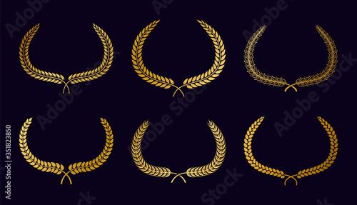 Fotografie, Tablou Set of different golden circular laurel foliate