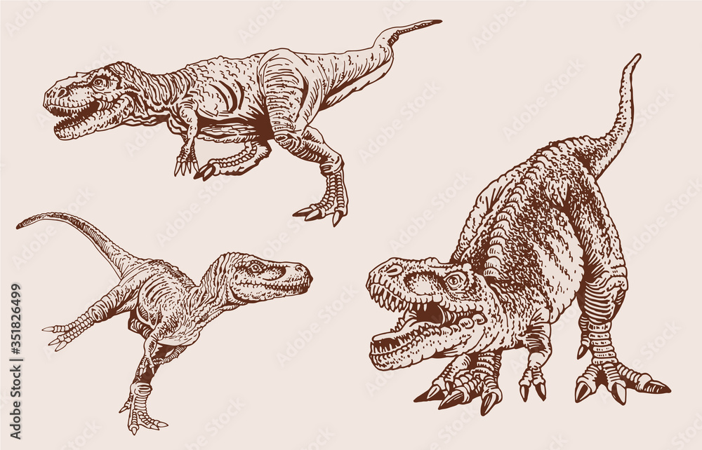 Fototapeta Graphical vintage set of tyrannosauruses, vector sepia illustration