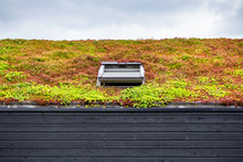 Building With A Green Roof Com...