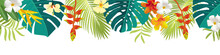Tropical Leaves And Flowers Bo...