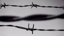 Close-up Of Barbed Wires