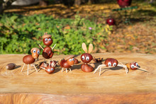 Group Of Characters Or Figurines Made With Chestnuts