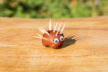 Funny Hedgehog Shape Character Or Figurine Made With Chestnuts On A Wooden Background In A Sunny Day