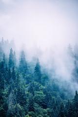 Fototapeta Góry Misty mountain landscape