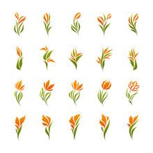 Vector Logo Templates Set Of E...