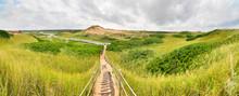 Sand Dunes. Cavendish Beach, PEI National Park, Prince Edward Island, Canada