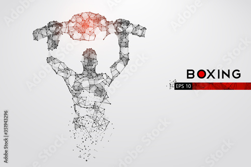 Abstract silhouette of a wireframe boxer fighter with boxing gloves on the white background Wallpaper Mural