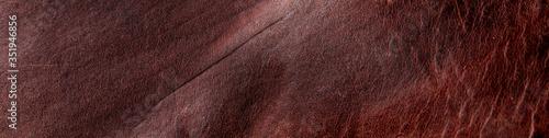 Obraz dark leather texture background banner use  raw - fototapety do salonu