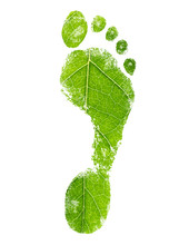 Green Eco Footprint. Leaf Design.
